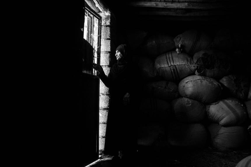 Fotografía por: Fatemeh Behboudi