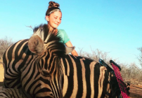 aryanna-gourin-zebra