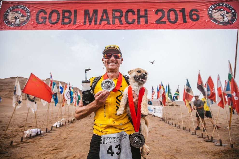 gobi-maraton-perrita-3