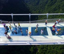 turistas-puente-china-cristal-alto-del-mundo