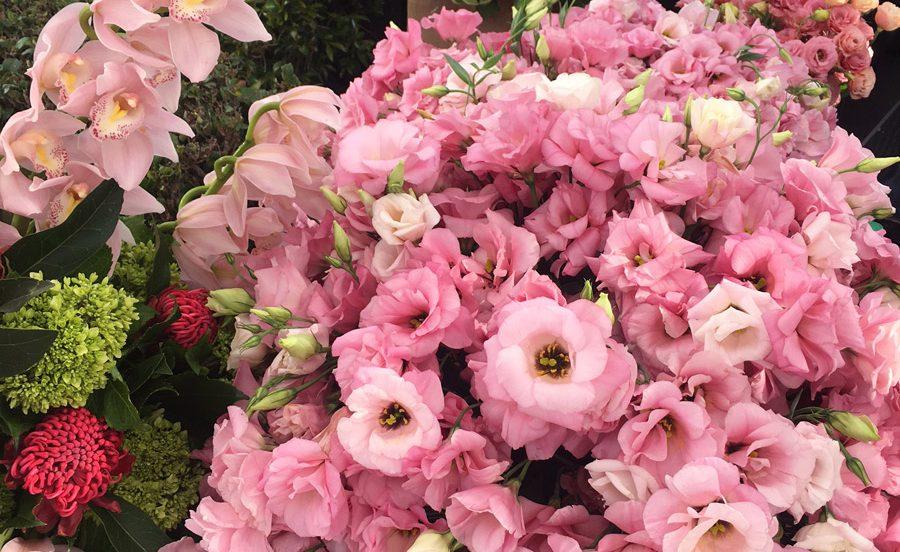 flores-emmys