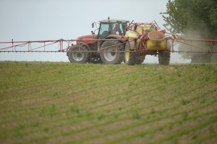 La empresa Monsanto ha sido criticada por ambientalistas y agricultores