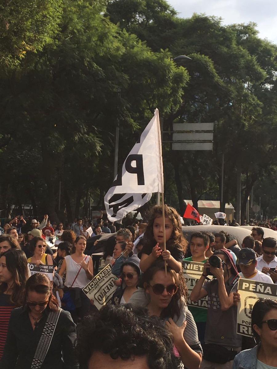nochixtlan-renunciaya-pena-nieto-reforma-manifestacion