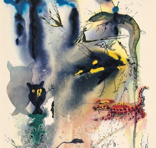 Salvador Dalí ilustración de búho