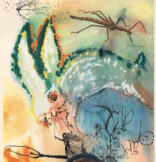 Salvador Dalí ilustración de conejo