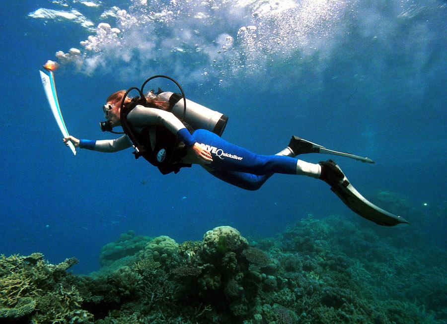 coral-arrecife-australia-gran-barrera