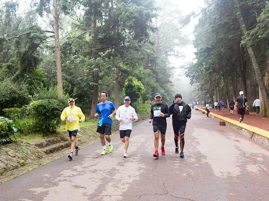 corredores-bosque-tlalpan-agresion-medio-ambiente