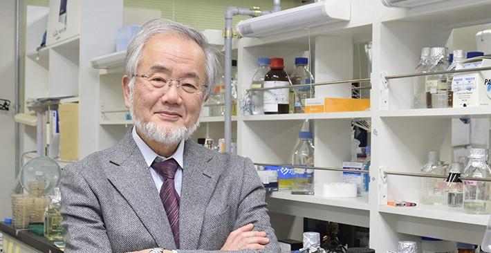 Yoshinori Ohsumi Ganador del Premio Nobel de Medicina