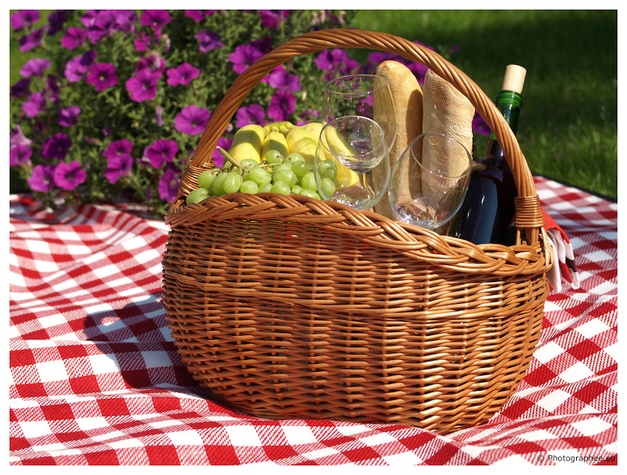 Canasta para picnic