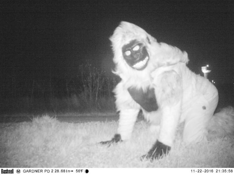Kansas - Sujeto con disfraz de gorila