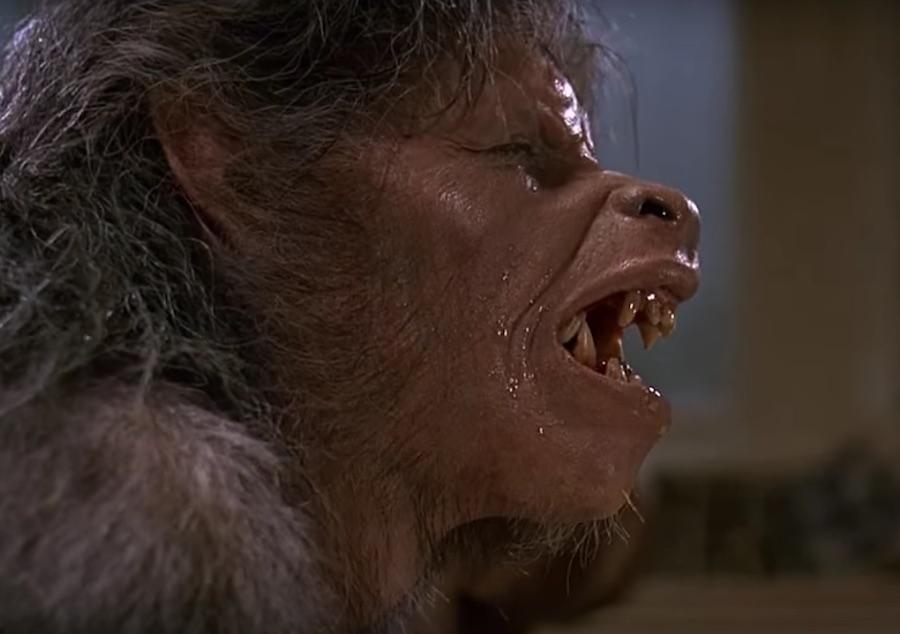 Hombre lobo - Transformación