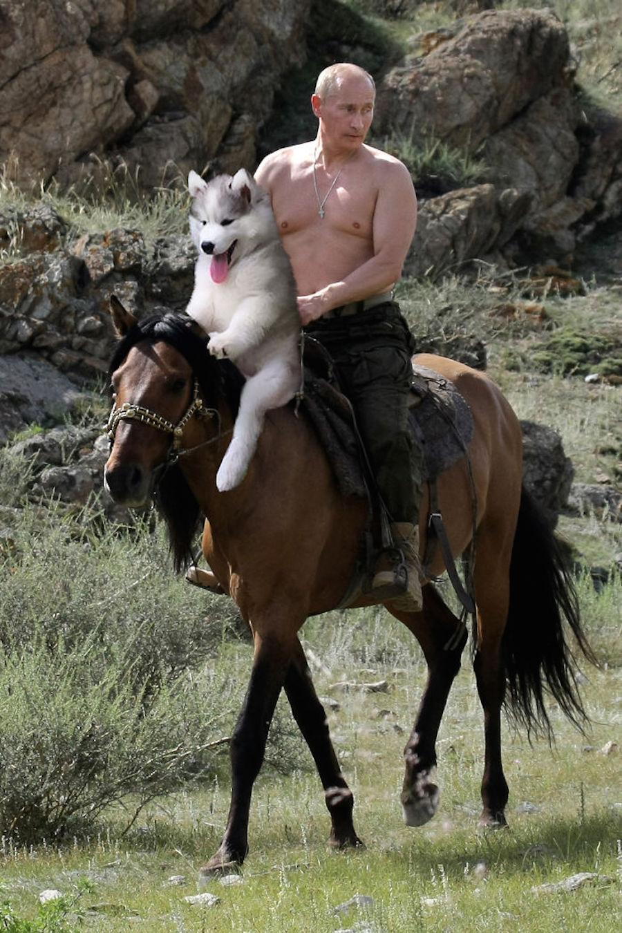 Perrito y Vladimir Putin
