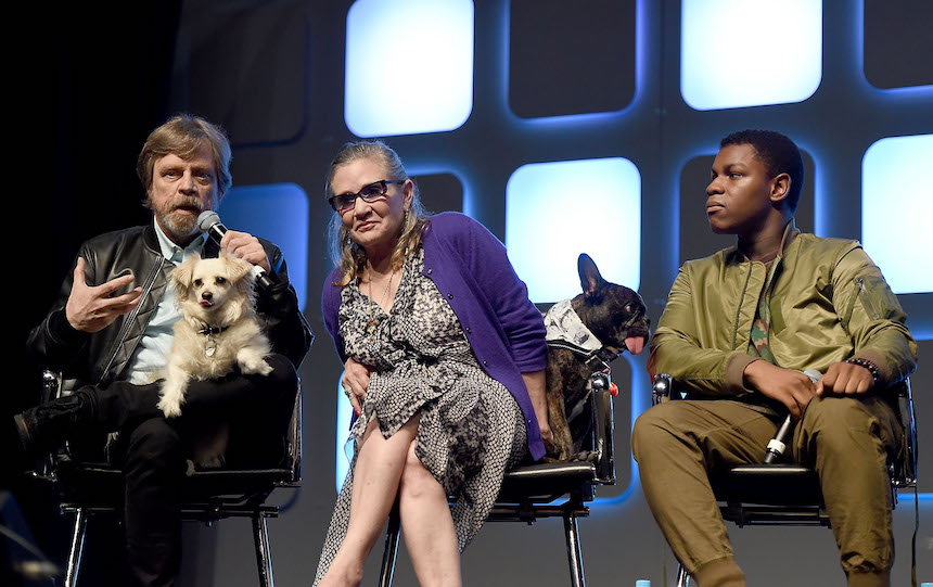 Disney Carrie Fisher