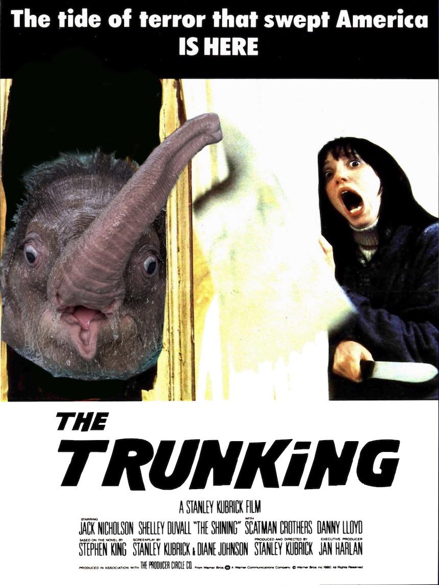 Elefante bebé - The Shining