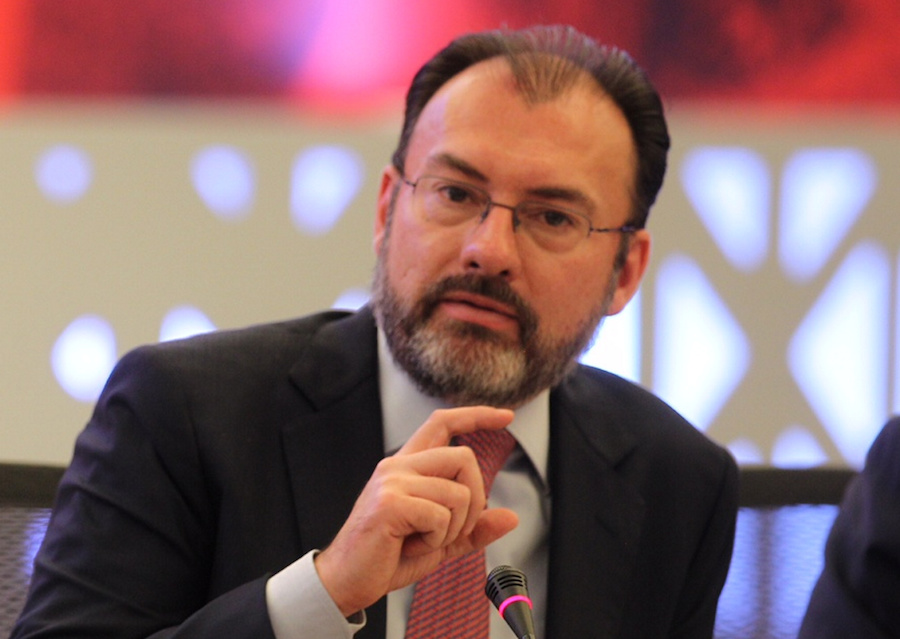 Image result for Luis Videgaray
