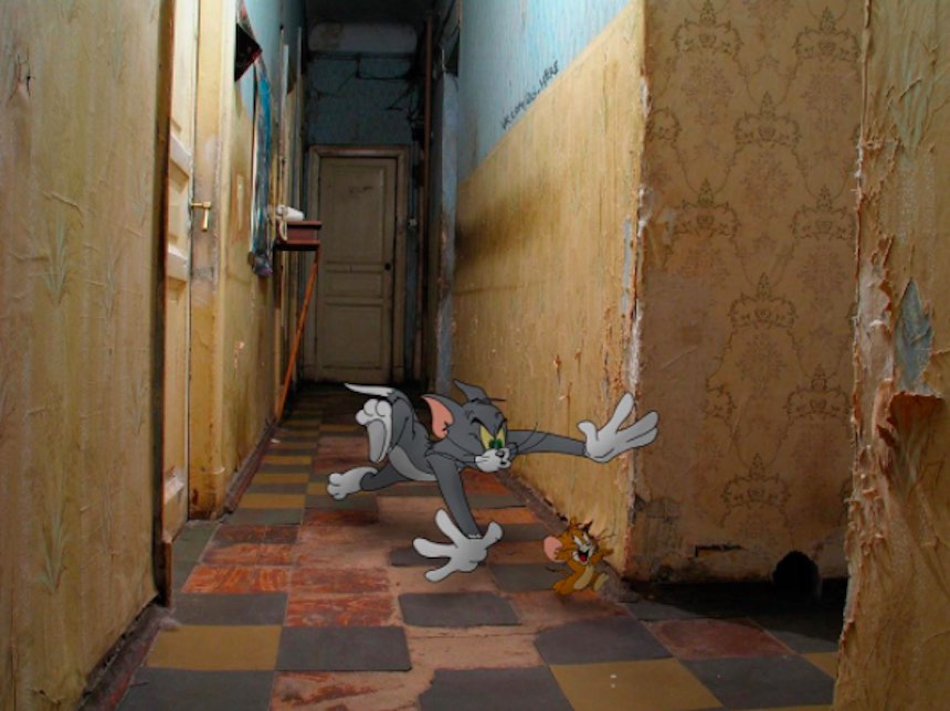 Tom y Jerry en el mundo real