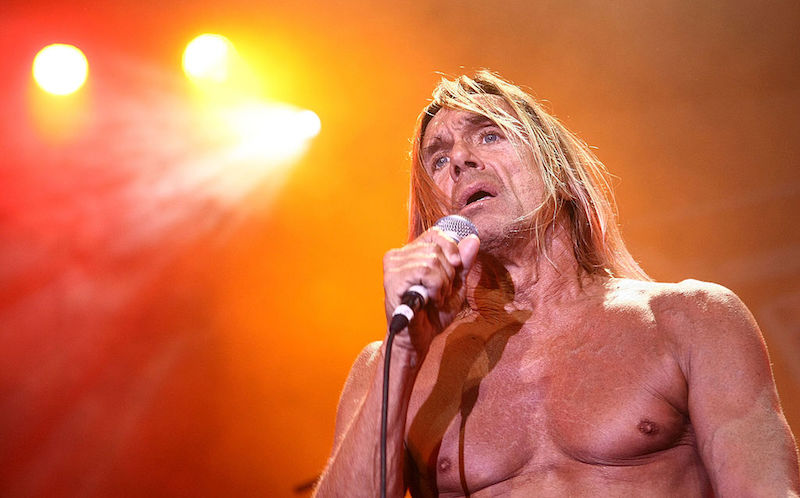 Iggy Pop The Idiot El Idiota