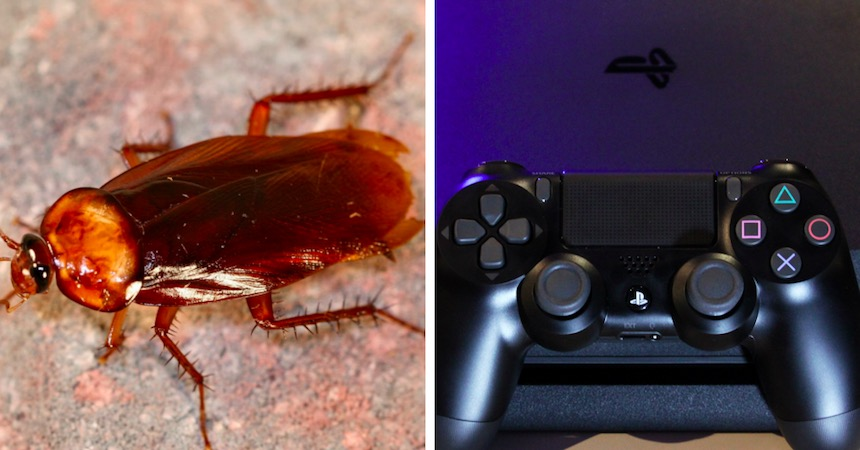Cucarachas en la PlayStation 4