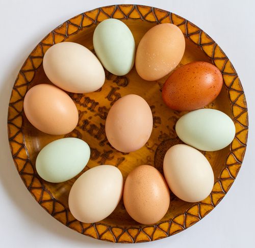 Plato redondo con huevos