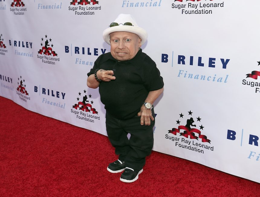 Verne Troy