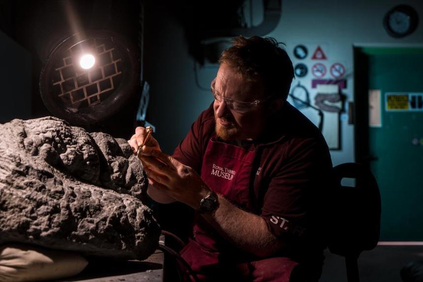 Limpiando el fósil del ankylosaurio