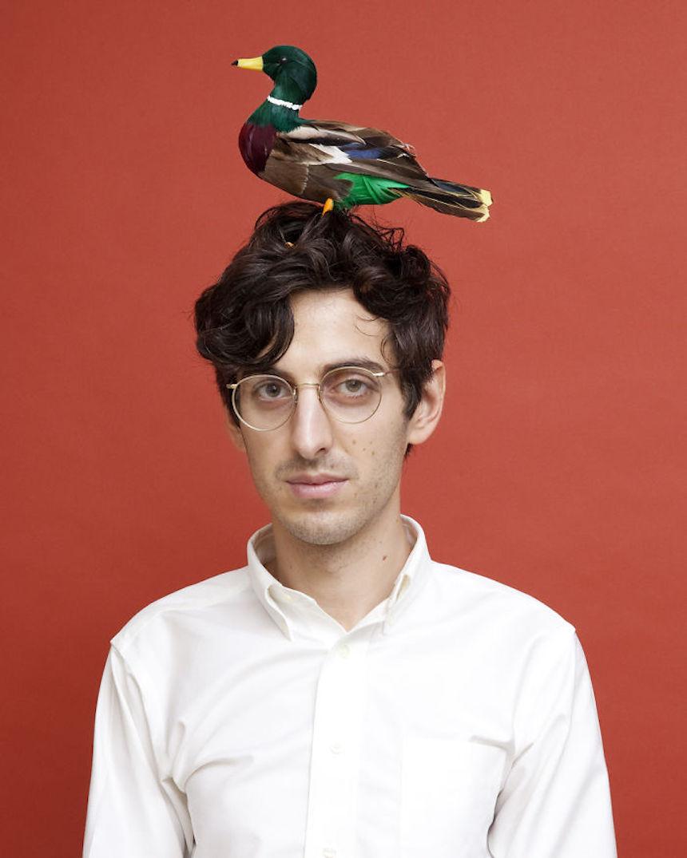 Leyes absurdas - Pájaro