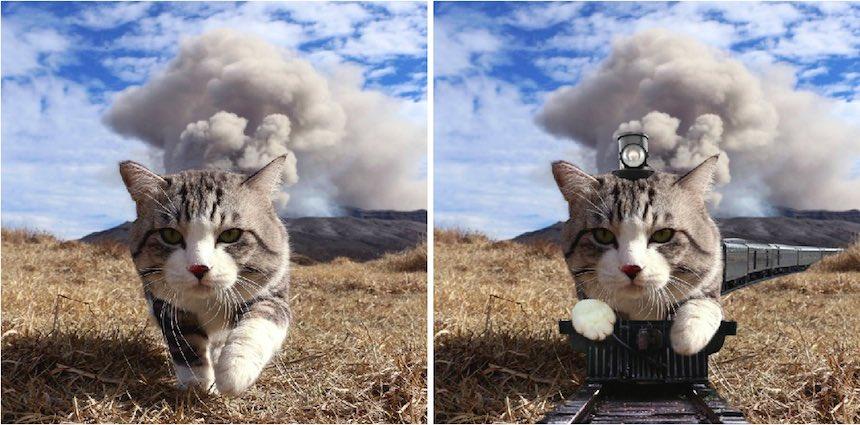 Gato - Photoshop