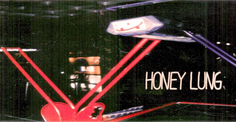 Música para empezar el día: Honey Lung – Sophomore