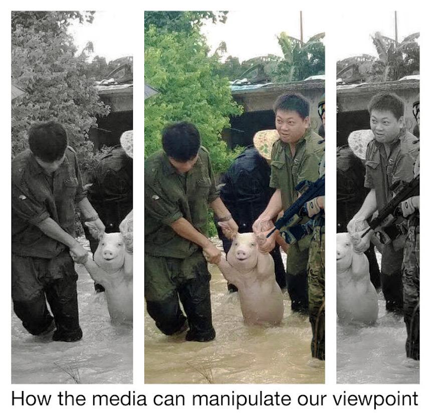 Cerdo de Photoshop - Manipulación mediática