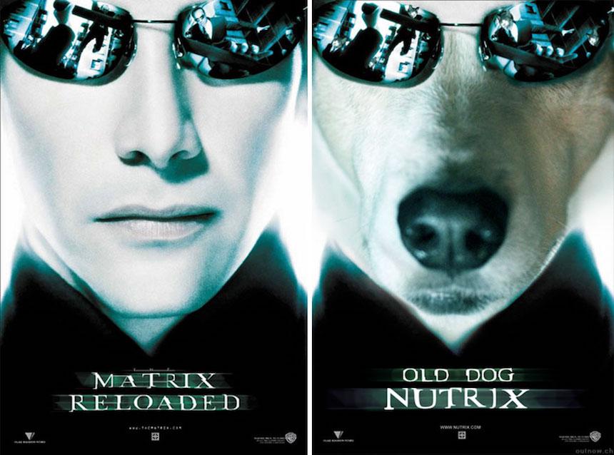 Lucy - The Matrix