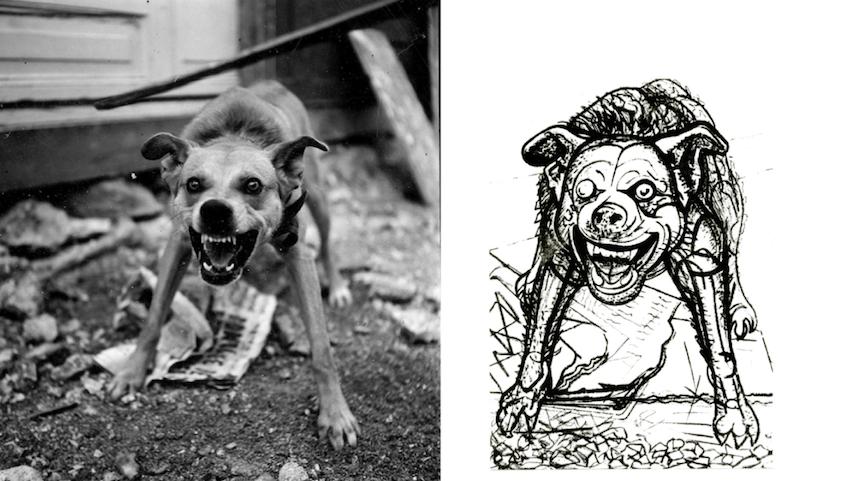 Foto y dibujo de perro de Siqueiros y Matiz