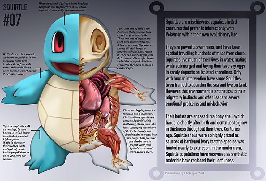 Conviértanse en Maestros Pokémon con este libro de anatomía