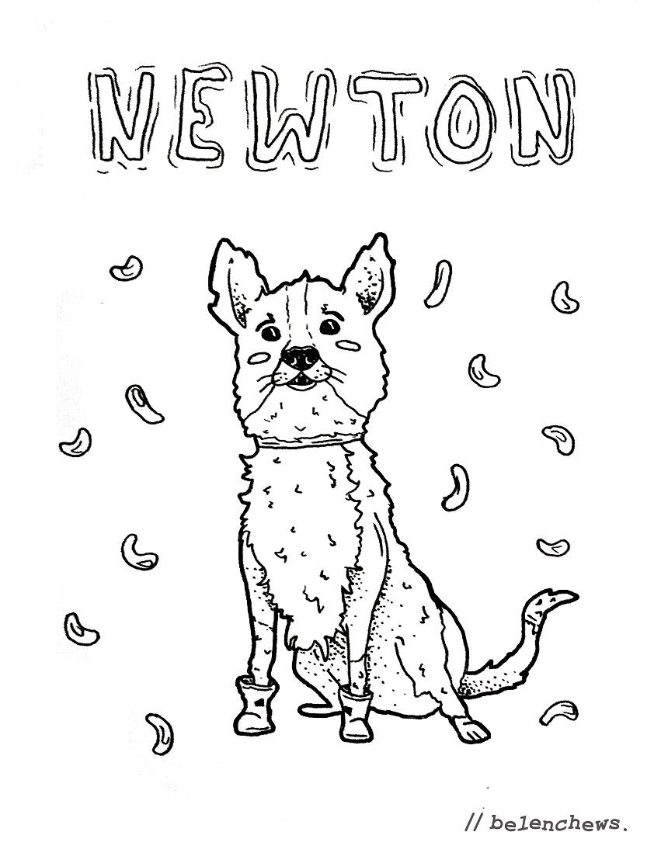 Dibujo de Newton