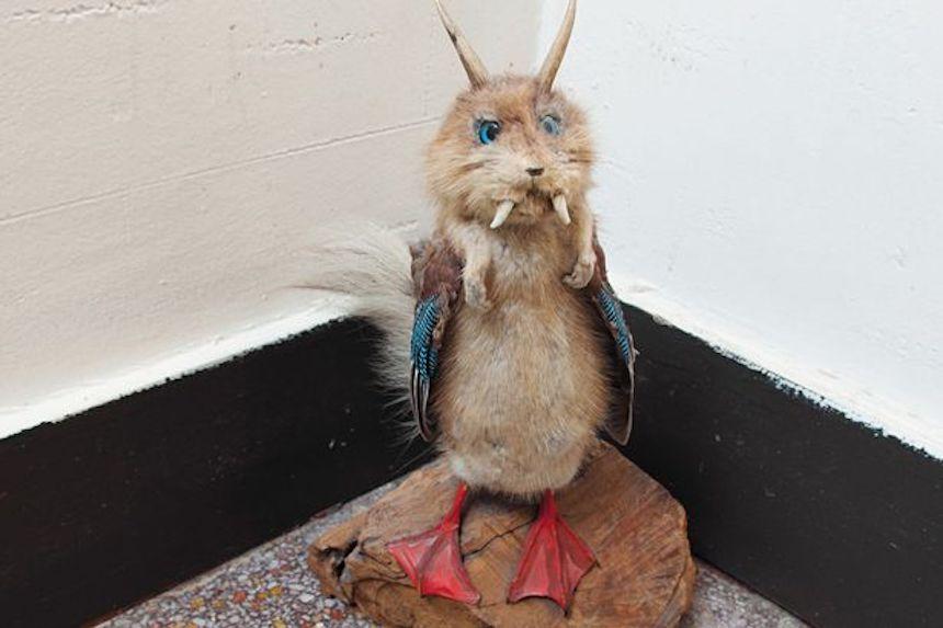 Taxidermia fea - Quimera