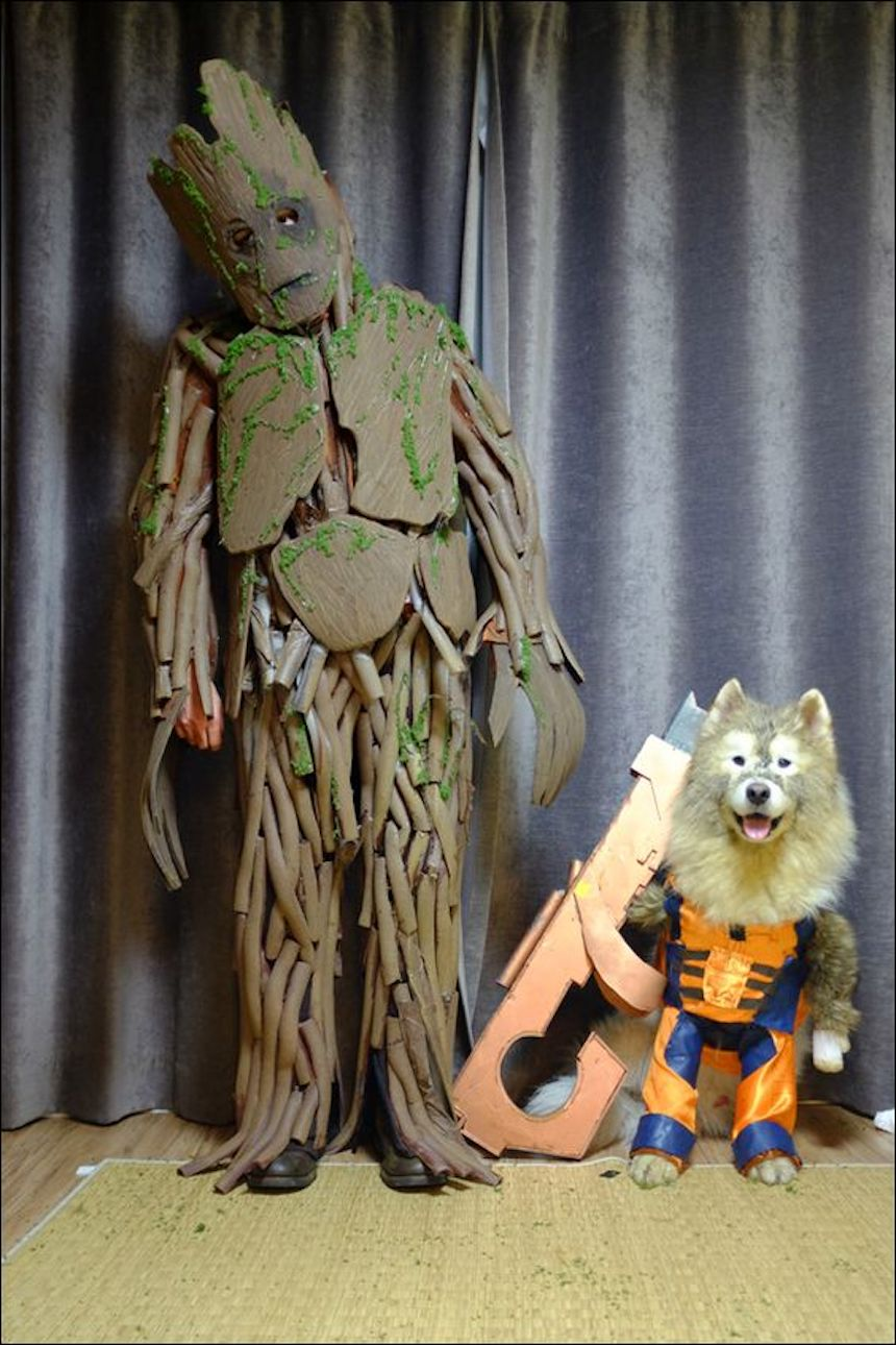 Disfraces para parejas de Halloween - Rocket y Groot