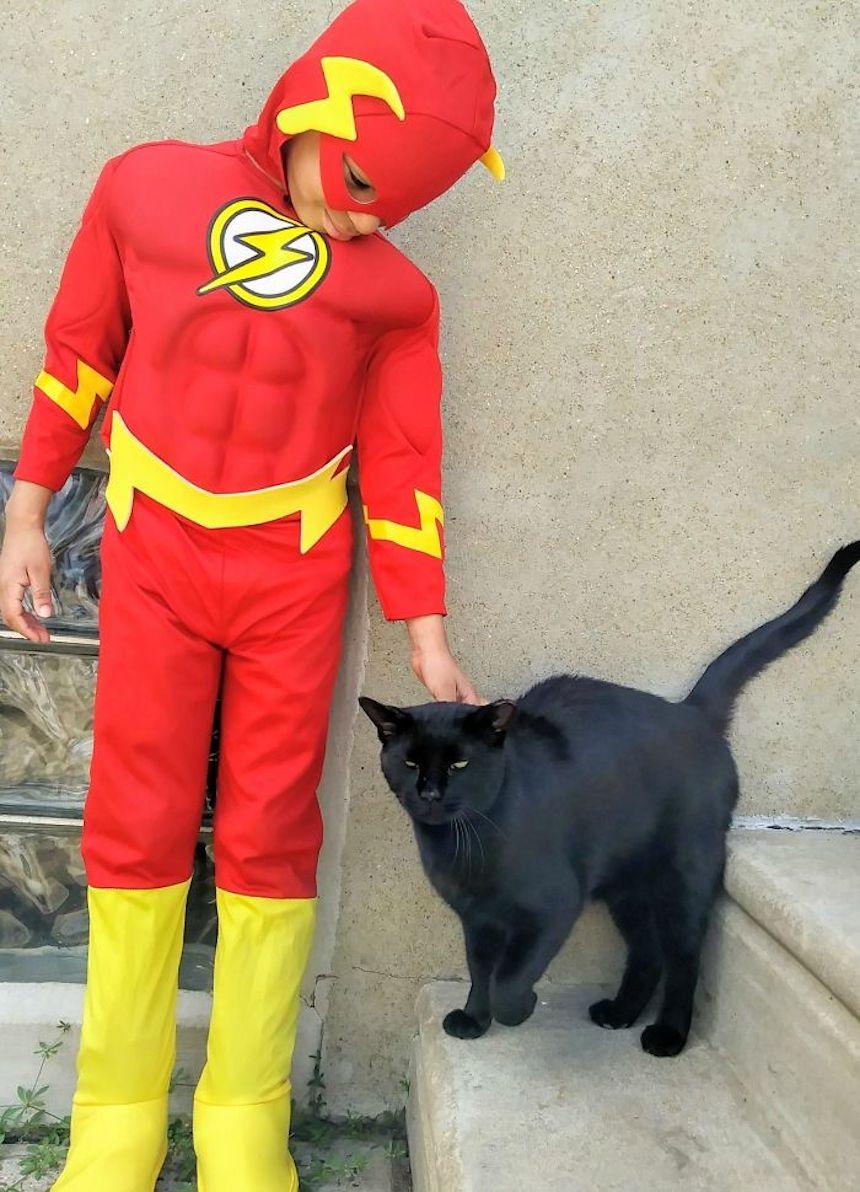 Shon y los gatitos - Flash y su amigo