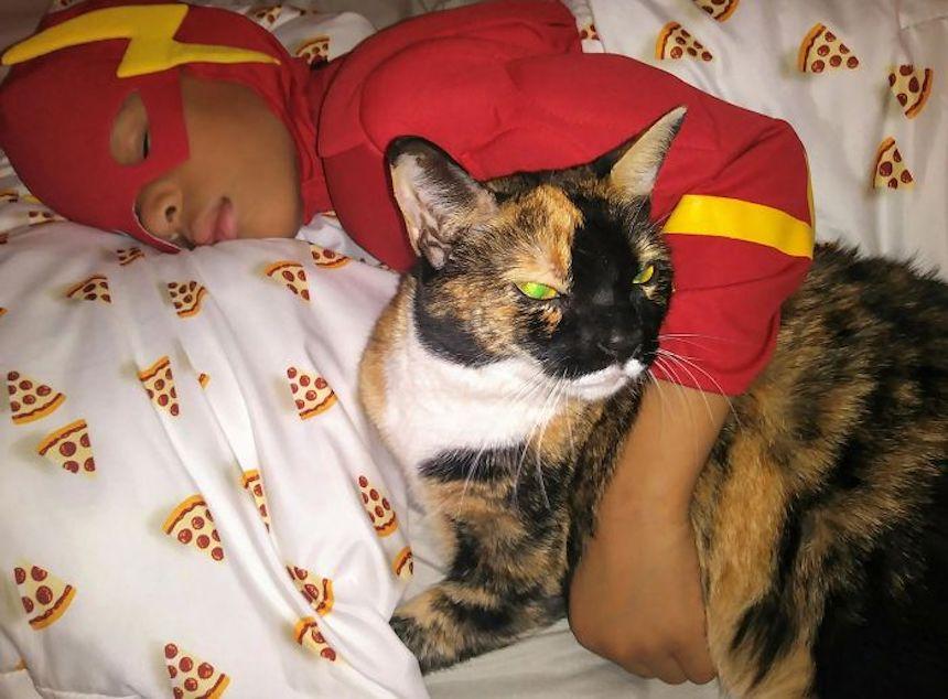 Shon y los gatitos - Siesta