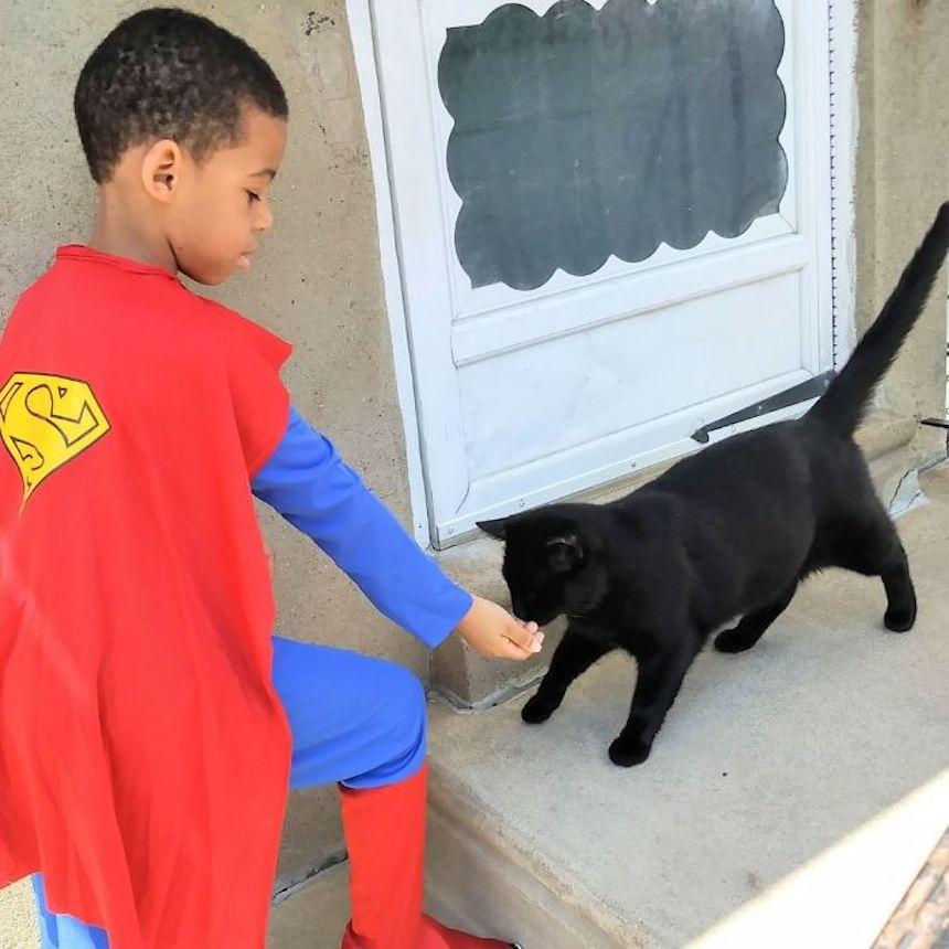 Shon y los gatitos - Alimentando