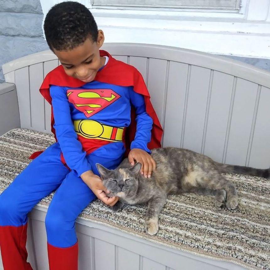 Shon y los gatitos - Superman