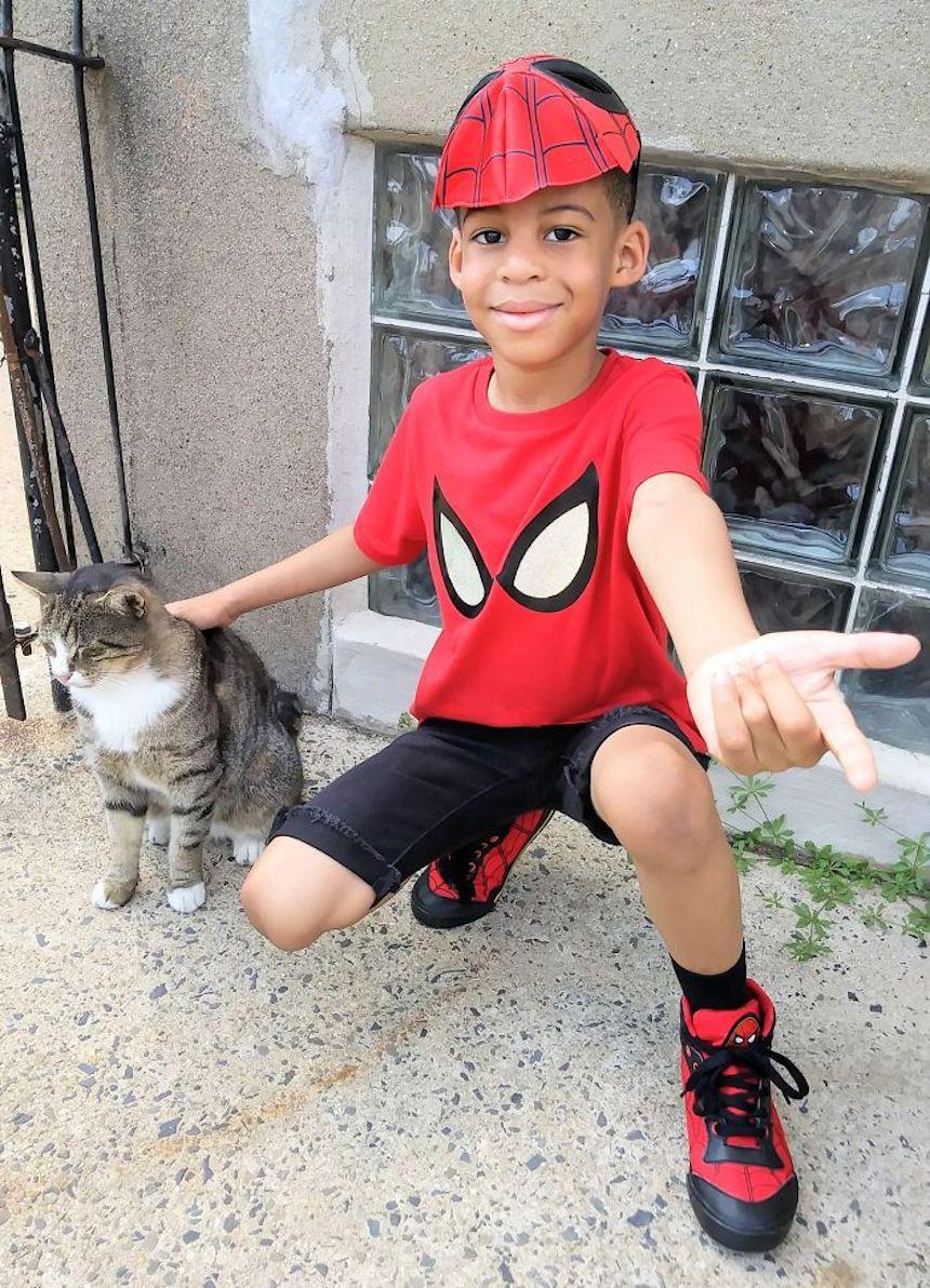 Shon y los gatitos - Spider-Man