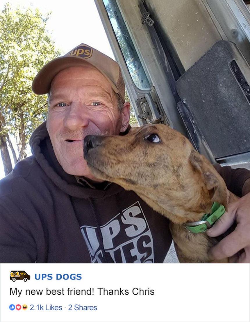 Empleados de UPS y perritos - Amigos