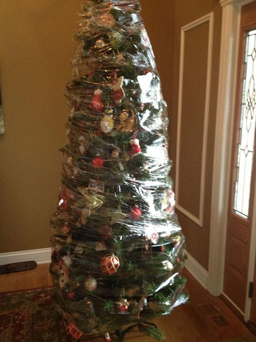 Protegiendo árboles de Navidad - Plástico