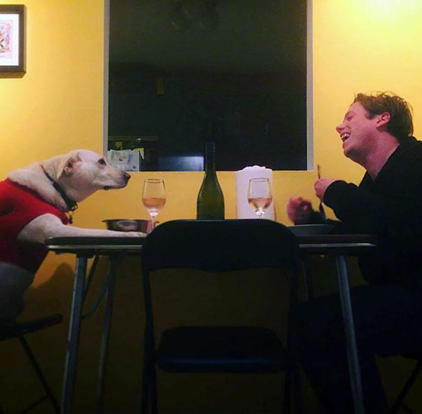 Fotos graciosas de novios y esposos - Cena con el perrito
