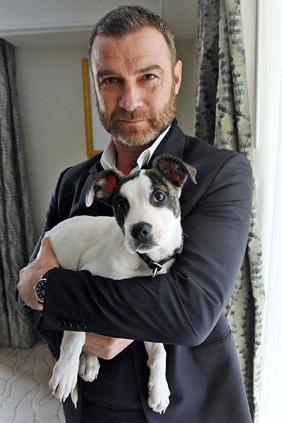 Sonrisa + lágrimas: El elenco de 'Isle of Dogs' se toma fotos con cachorros en adopción