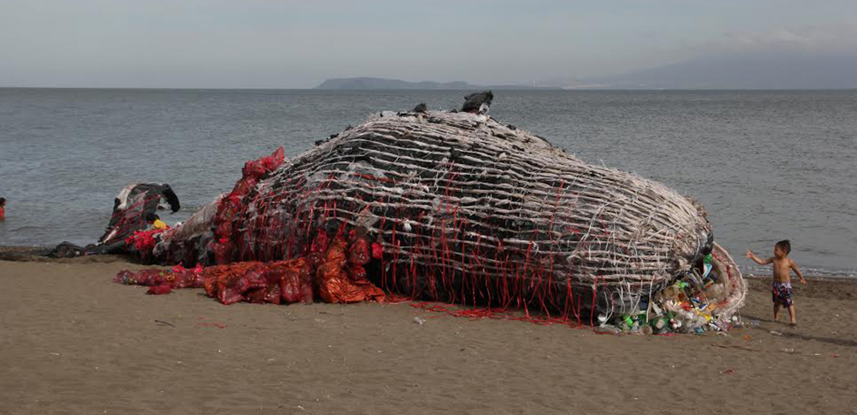 La verdadera historia detrás de la ballena muerta llena de plástico