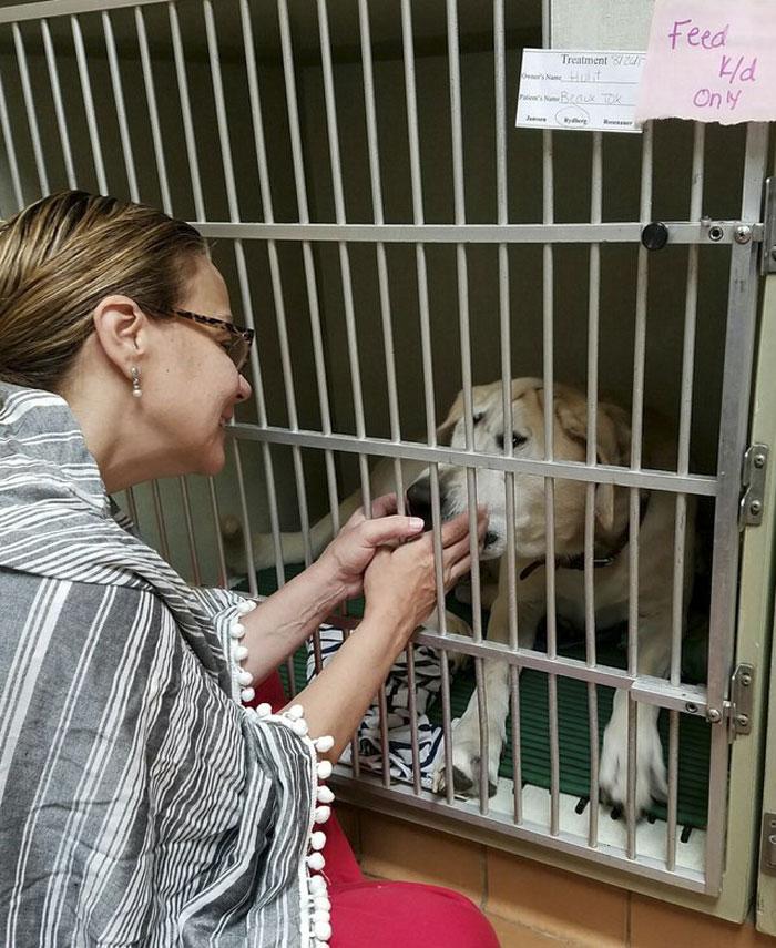 Perro deformado es rescatado