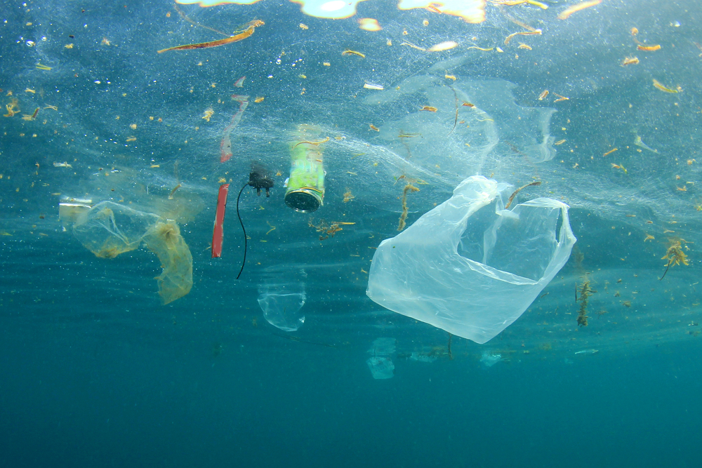 descubren enzima para descomponer plástico