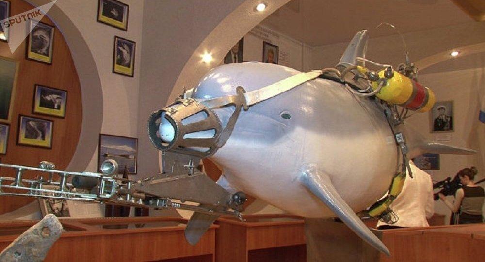 Delfines militares prototipo